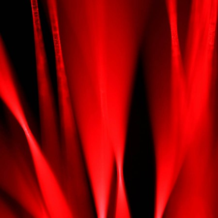 """Hot Blooded"" (series of 3) Abstract Fine-Art Photo by DazzleZazz.com. All Rights Reserved."